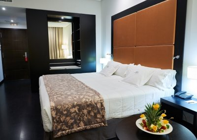 GRAN HOTEL DON MANUEL habitacion twin 2