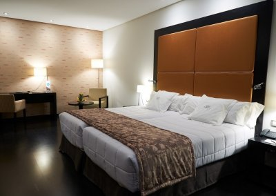 GRAN HOTEL DON MANUEL habitacion twin