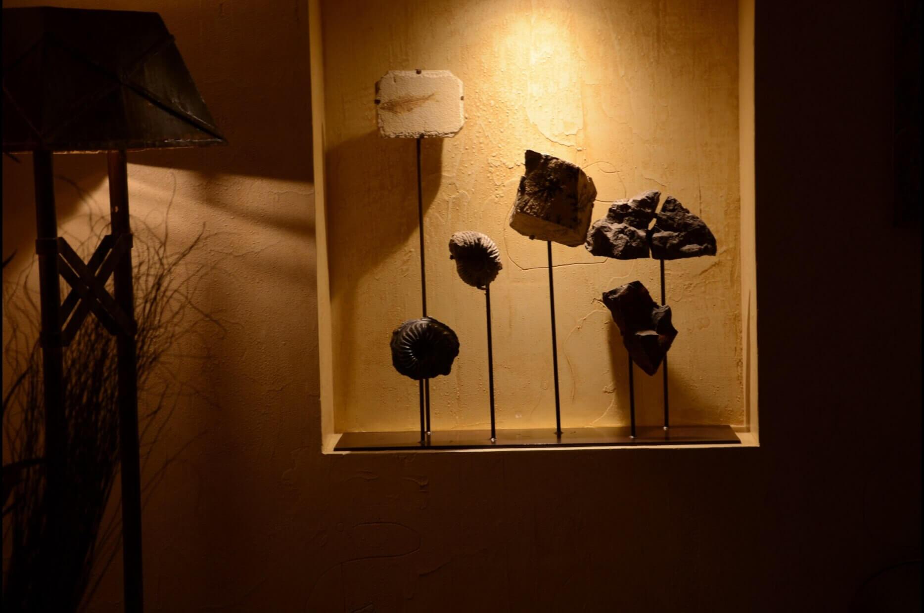 Patagonia-salon-lampara