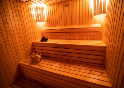 Recreation Premier Spa Sauna 7
