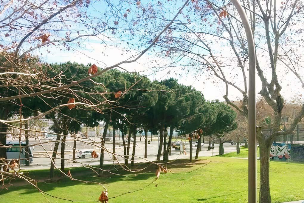 Port Vistas1
